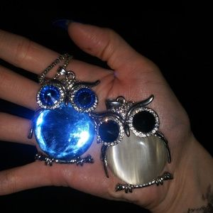 Two rare jeweled owls